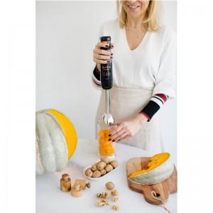Mixeur Plongeant Arnica