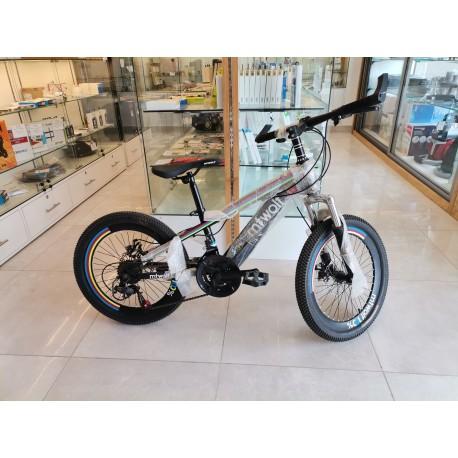 "Bicyclette VTT 20"""